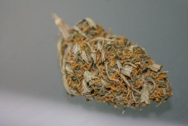 Pineapple Express marijuana strain flowers